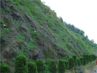 编织石笼网
